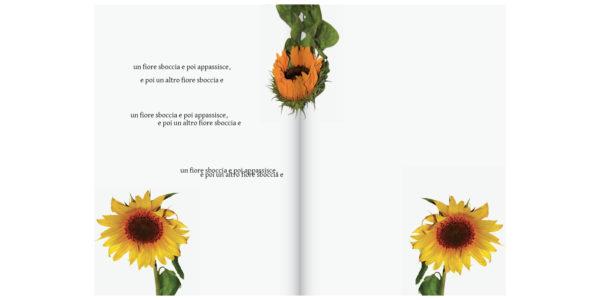 RUFA-Libro Digitale-Foto1AB-FB33 – Michael Trutta copia