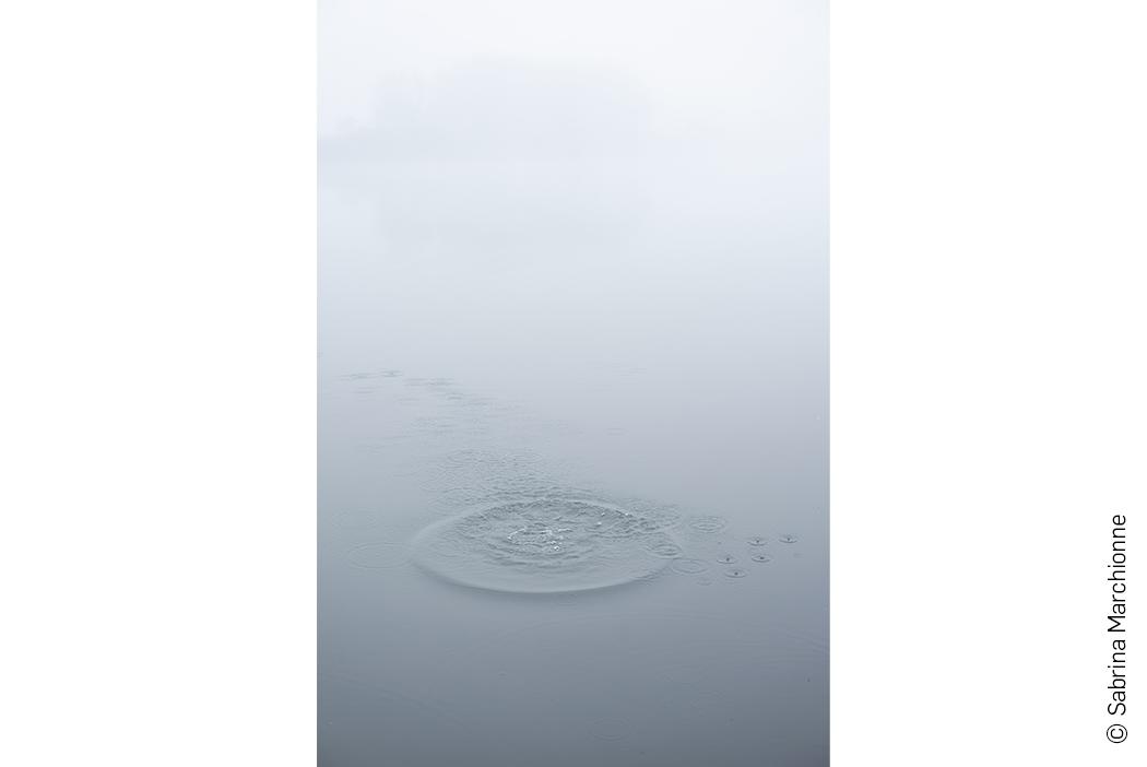 Slider opere - Quando cadono le piume - Sabrina Marchionne 1